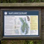 Saari on luonnonsuojelualuetta
