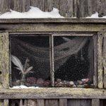 Kalavajan ikkuna
