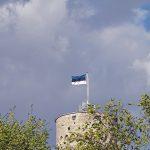Pitkä Hermanni, Tallinna