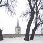 Nigulisten kirkko, Tallinna